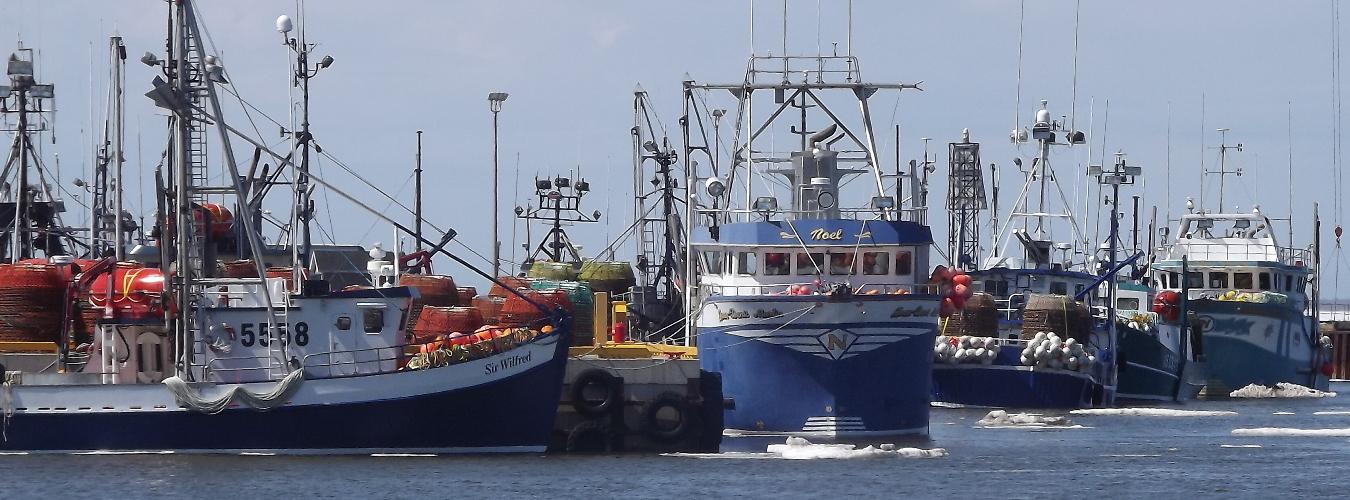 Administration portuaire de Shippagan